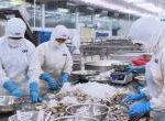 Đơn hàng chế biến thủy sản Hokkaido theo visa đặc định