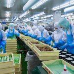 Đơn hàng chế biến thực phẩm tại tỉnh Kagoshima