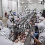 Đơn hàng đăc định chế biến TP thịt lợn tại kagoshima