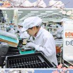 Đơn hàng đặc định lắp ráp linh kiện điện tử (DD210922)